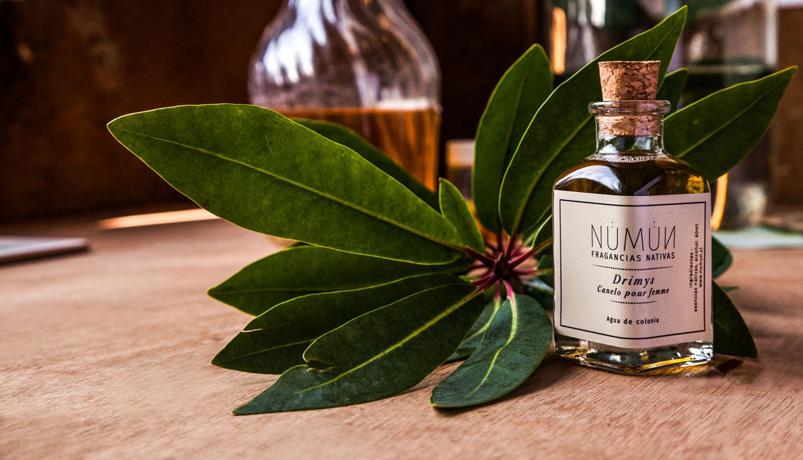 DB2 - آشنایی با عطر سازی طبیعی | عمر عطرهای طبیعی