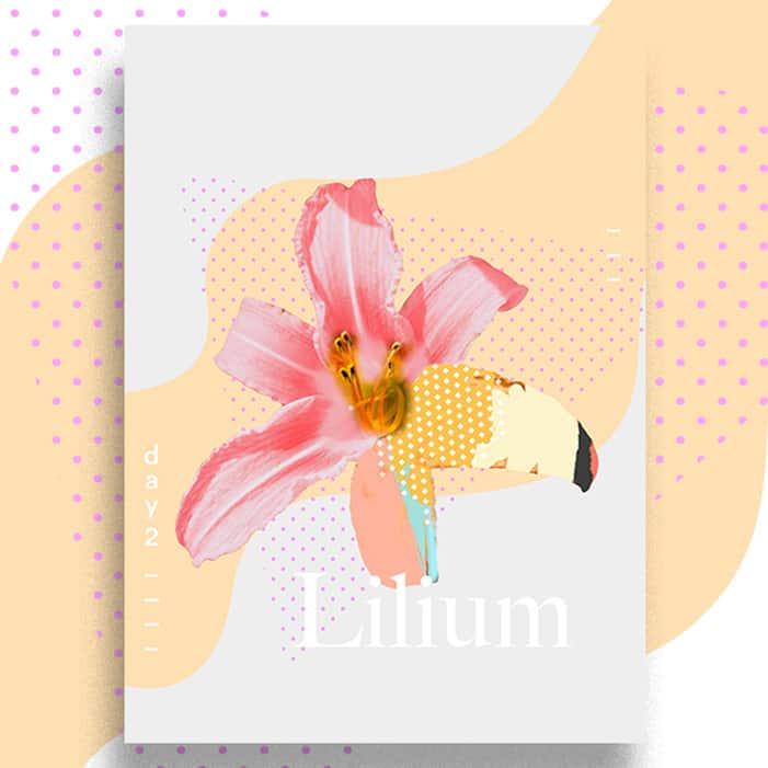 DB137 - لیلیوم : عطر لیلیوم و گل لیلیوم – lilium – lilly